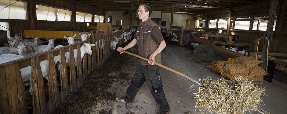 Junger landwirt bei der arbeit  Bio-aus-BW - HINTERGRÜNDE & FAKTEN